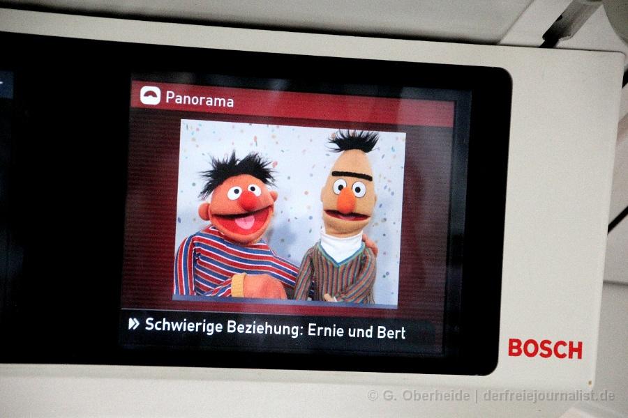 """Ernie und Bert aus der Sesamstraße: """"Schwul - oder nur Freunde?"""""""