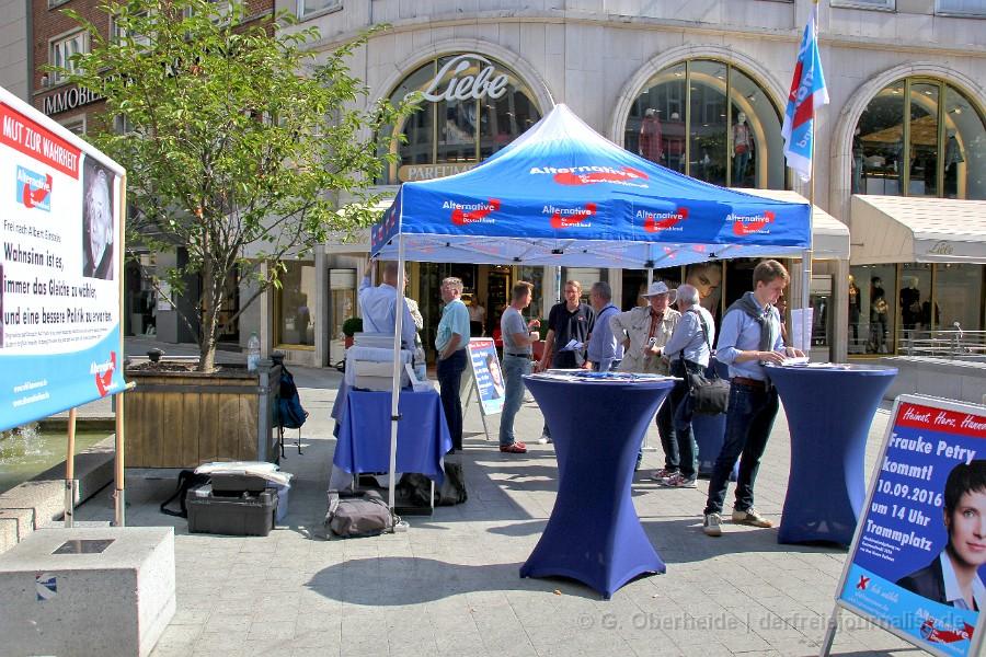 AfD Hannover, Info-Stand am Blätterbrunnen
